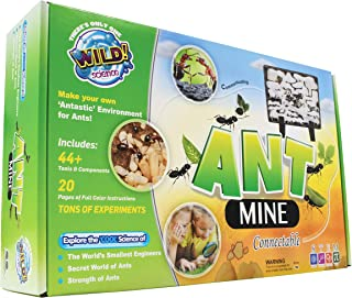 ant farm wild science