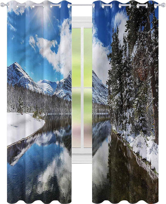 Window Curtain Drape Winter Tranquil National Max 54% OFF W42 Bla x Overseas parallel import regular item Park L72