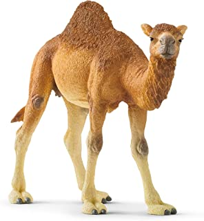 Schleich Wild Life Dromedary Educational Figurine for Kids Ages 3-8