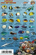 Franko's Hawaiian Islands Mini Fish Card