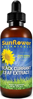 Sunflower Botanicals Black Currant Leaf Extract, All Natural, 2 Ounces, Dropper-Top Glass Bottle