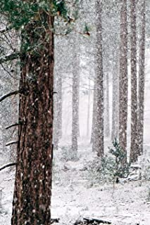 First Snowfall Journal: 150 Page Lined Notebook/Diary