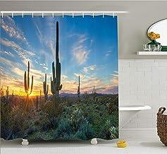 Nyngei Saguaro Cactusdecor de deEl Sol se está colocando Entre Las espinasde los Cactus Mágico mediodía Paisajediseño Salvaje SDE Verde Azul