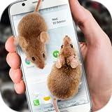 Do rato no ecrã piada