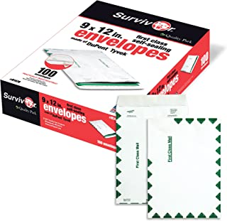 Survivor R1470 Tyvek USPS First Class Mailer, 9 x 12, White (Box of 100)