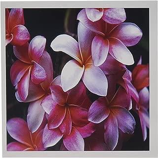 3dRose Hawaiian Fuchsia Colored Plumeria Flowers - Greeting Cards, 6 x 6 inches, set of 6 (gc_62165_1)