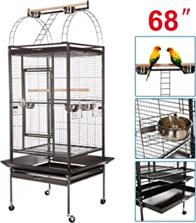 Best bird with cage Reviews