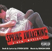 duncan sheik spring awakening
