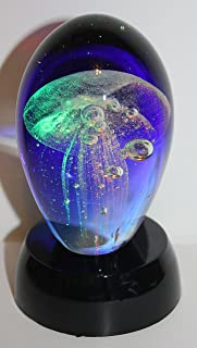 قنديل البحر الزجاجي الأزرق الساخن (اللامع في الظلام) مع فريد.