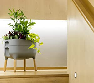 Alfresco Home 614-1710 Urbalive Low FSC Hardwood Legs-Anthracite Finish Self Watering Planter, Grey