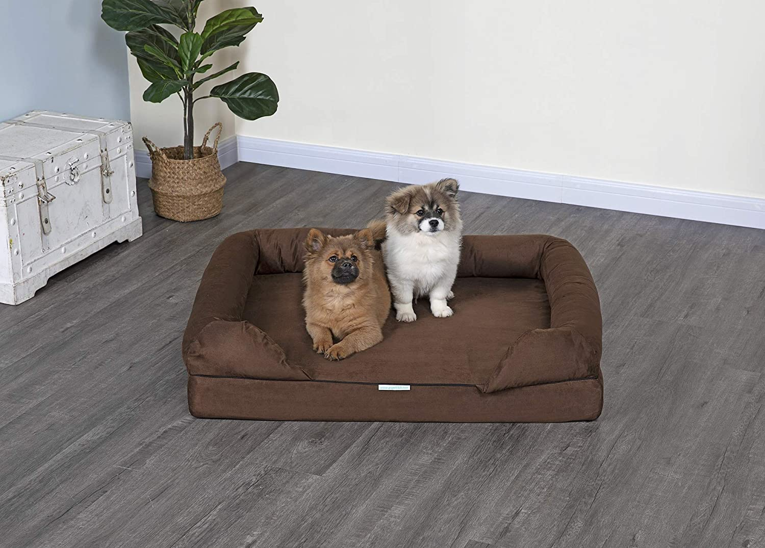 Fashionable Go Pet High order Club Memory Foam Dog with and Bed Bolster Removeable