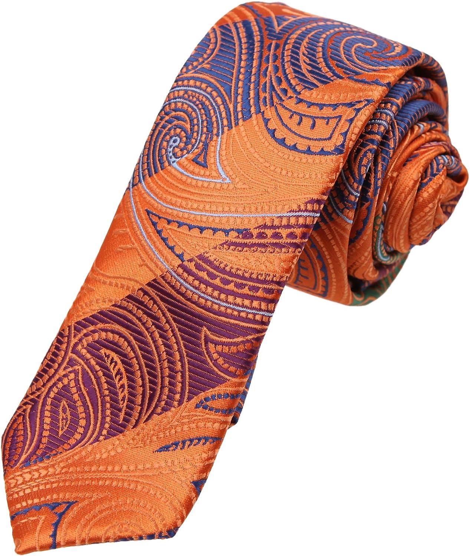 Dan Smith Absolutely Gentlemen Slim Necktie Patterned Microfiber Skinny Tie With Box