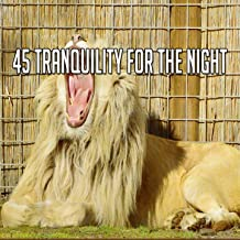 45 Tranquility for the Night