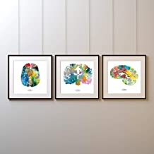 "J. Sayuri Human Brain Art Set of 3 - Colorful 12"" x 12"" Watercolor Brains Prints - Thoughtful and Colorful Neuroscience, P..."
