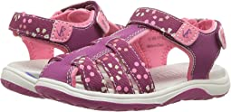 See Kai Run Kids - Paley Webbing (Toddler/Little Kid)