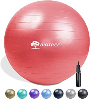 """Bigtree Yoga Ball Exercise Fitness Core Stability Balance Strength Anti-Burst Heavy Duty Red 25.5"""" (65cm)"""