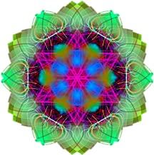 Living Kaleidoscope