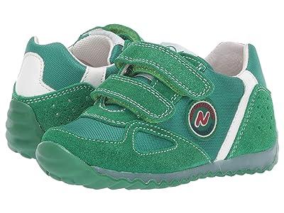 Naturino Isao SS19 (Toddler/Little Kid) (Green) Boy