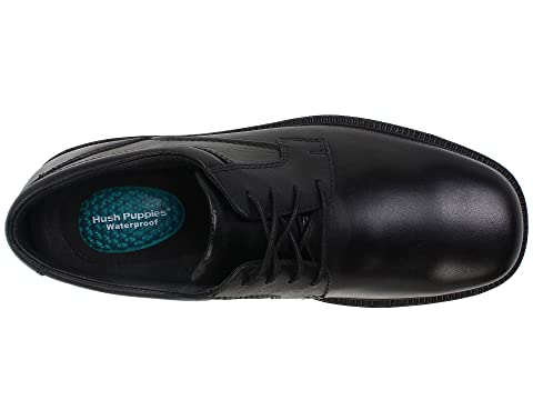 Leatherbrown De Cachorros Estrategia Silencio Negro De Cuero FxYAnP