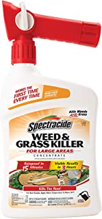 Spectracide Weed & Grass Killer Concentrate, Ready-to-Spray, 32-Ounce