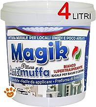 PITTURA ANTIMUFFA MAGIK MARIOTTI 4 LT