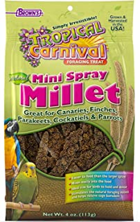 Brown's Tropical Carnival Natural Mini Spray Millet Bird Treats