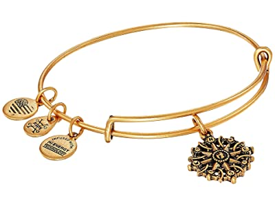 Alex and Ani Path of Symbols-Compass III Bangle (Rafaelian Gold) Bracelet
