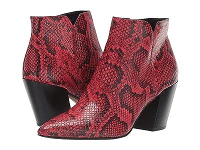 Dolce Vita Aden (Red Snake Print Leather) Women