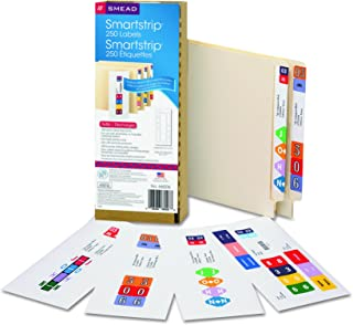 Smead Smartstrip Labels for Inkjet Printers, End Tab Label Refill Pack, 250 Labels per Pack (66006)