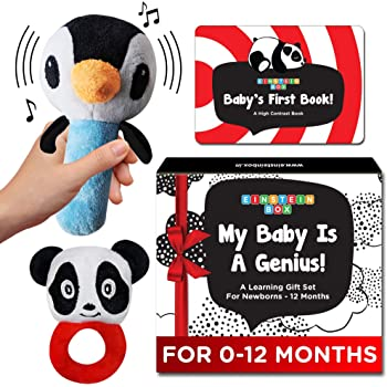 Einstein Box My Baby is A Genius | Baby Toys Set for Infants and Newborns of 0-12 Months | Set of Rattle Toys + High Contrast Books+ High Contrast Flashcards| Baby Boys and Girls