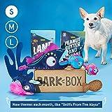 Dog Subscription Box