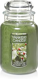 Yankee Candle 1595632Z Scented Candle, Large Jar, Snow/Dusted Bayberry Leaf