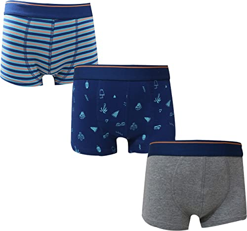 Real Kids Boy's Cotton Briefs(Pack of 3)