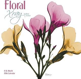 Best floral 2016 calendar Reviews