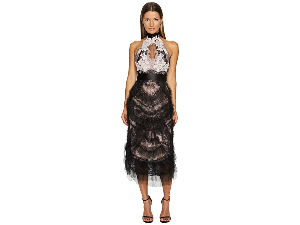 Marchesa Tea Length Cocktail with Corded Lace and Chantilly (Black/Blush) Women