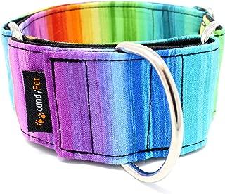 candyPet Collar Martingale Para Perros - Modelo Arcoiris, L