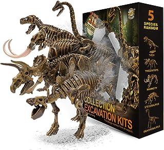 JamBer Juego de Dinosaurios Juguetes Fósiles de Excavación Modelo de Dinosaurio para Niños Niñas