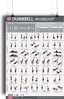 Dumbbell Exercise Workout Poster for Women - Laminated - Exercise for Women - Leg, Arm, Exercises - Home Gyms - Fitness Chart - Resistance Training Exercises - Total Body Workout Exercise Poster