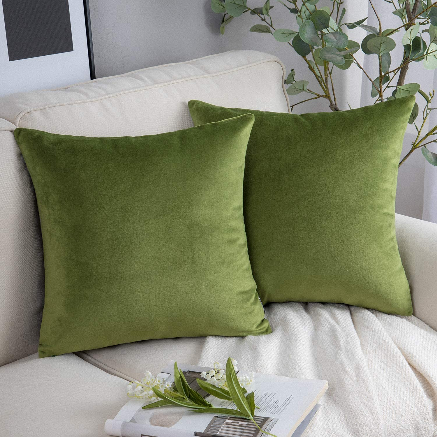 Phantoscope Pack of 2 Velvet Manufacturer direct delivery Throw Soft Limited price Decorative Covers Pillow