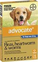 Advocate Flea, Heartworm and Worm Control for XL Dogs, Blue, 6 Pack