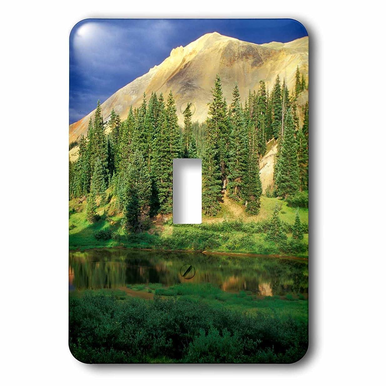 酔って頭痛めったに3dRose lsp_230386_1 米国、コロラド州。 Red Mountain at Sunset トグルスイッチ ミックス