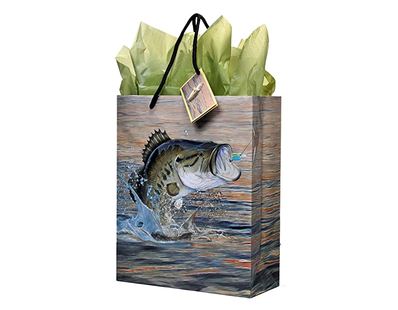 Fishing Gift Bag, Medium, 10 x 12 x 4.25 Inches, Gone Fishin' Party Collection by Havercamp