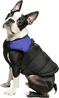 dog hoodies for french bulldogs