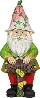 Exhart Colorful Gnome w/Welcome Sign Resin Statue - Handcrafted Gnome Garden Statue Holding a Welcome Wooden Sign - Gnome Decor in Hand-Painted Colors - Best as a Fairy Tale Home Decor, 12 Inches