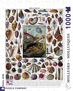 New York Puzzle Company - Vintage Images Mollusks - 1000 Piece Jigsaw Puzzle