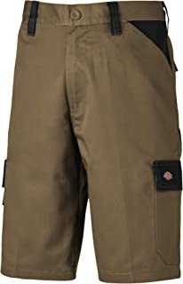 Dickies Mens Everyday Shorts (34) (Khaki/Black)