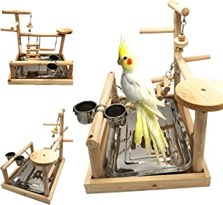 Borangs Parrots Playstand Bird Playground Parrot Perch Gym Stand Playpen Bird Ladders Exercise Playgym with Feeder Cups for Electus Cockatoo Parakeet Conure Cockatiel Cage Accessories Exercise Toy