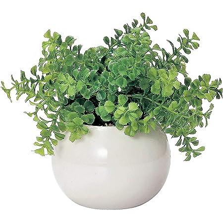 ミニ インテリアグリーン 造花 観葉植物 かわいい まあるい 光触媒 グリーン ファンシェイプ