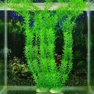 Exing Fish Tank Plant Aquatic Semillas Paisaje Moss Agua C/ésped Jard/ín C/ésped Decoraci/ón de Estanque