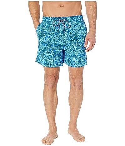 Speedo Sunray Volley (Blue) Men